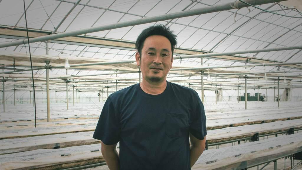 「茂呂いちご農園」いちご王国にて、スカイベリーで収益アップ&効率化!